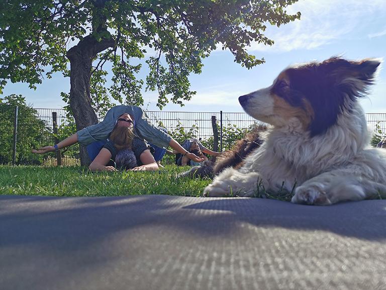 Workation 2021 - Partneryoga mit Hund